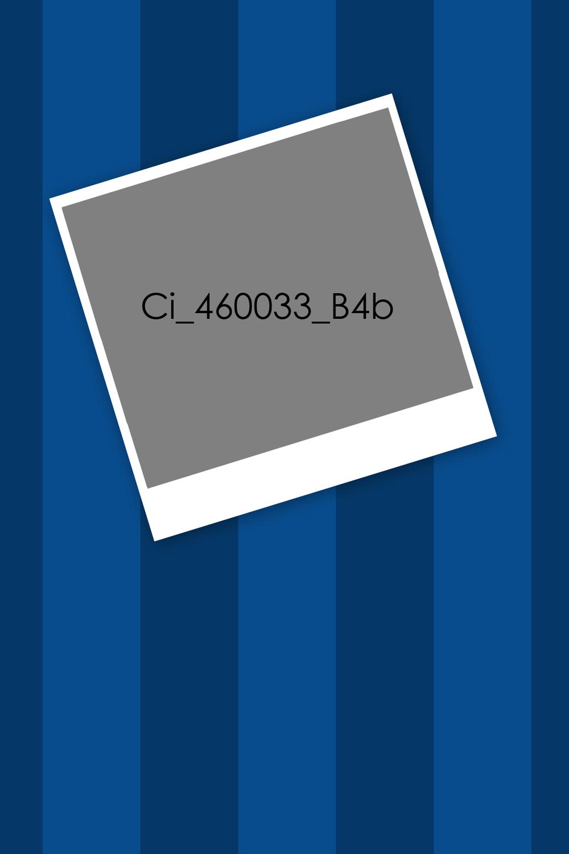 Ci_46033_B4b-.jpg
