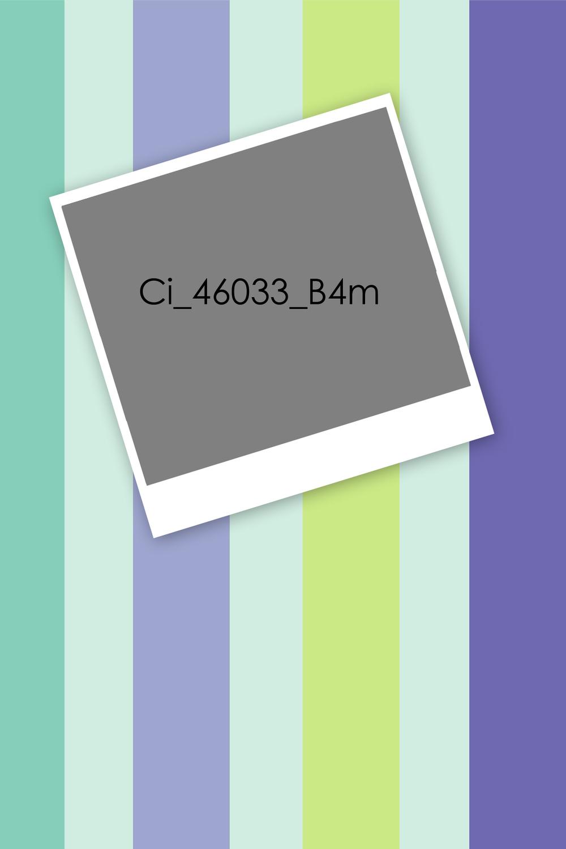 Ci_46033_B4m.jpg