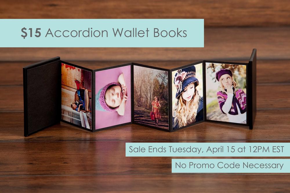 15 Accordion Wallet Books