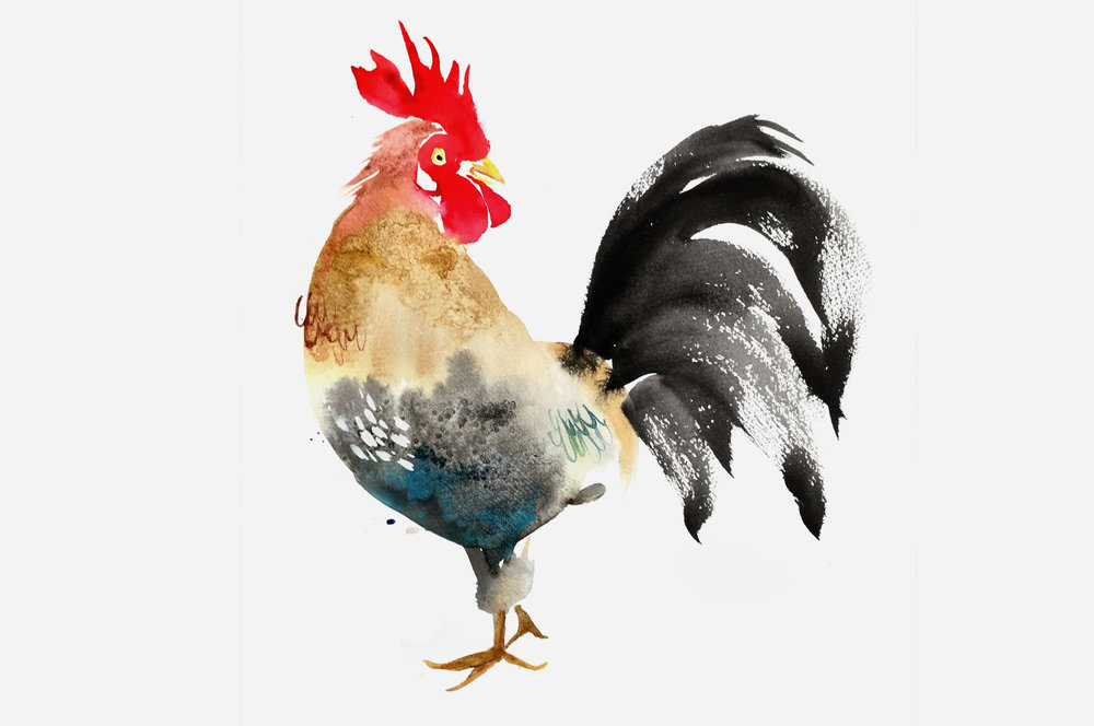 JulieSongInk_Rooster copy.jpg