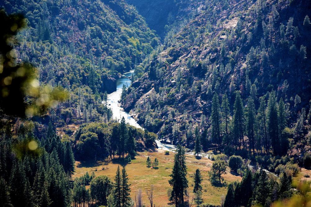 Yosemite-2015--15.jpg