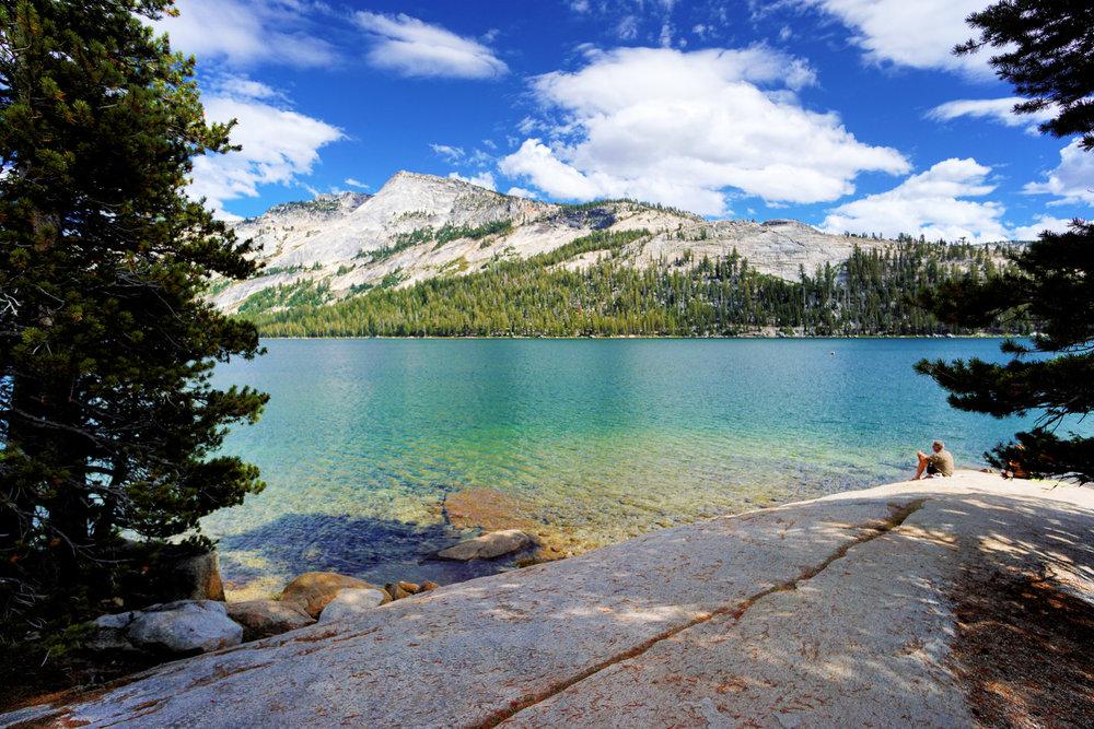 Yosemite-2015--16.jpg