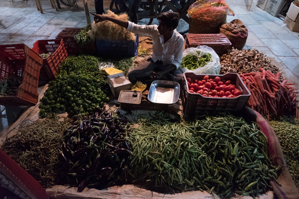 India-2017-9726.jpg