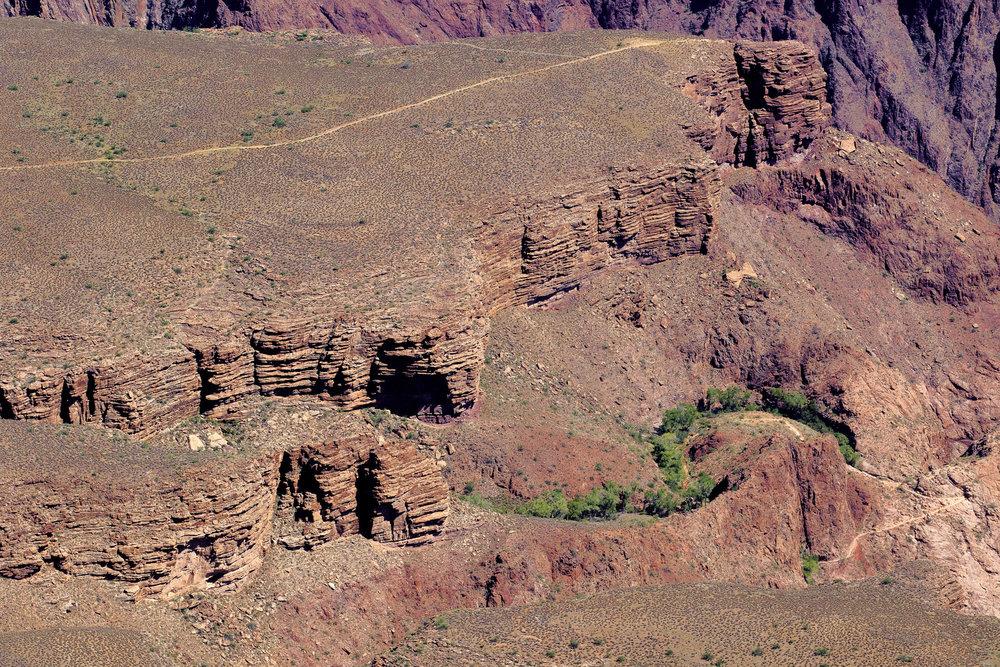 Grand Canyon-2017--4.jpg