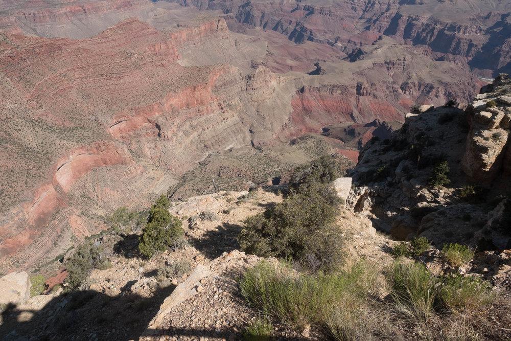 Grand Canyon-2017-7895.jpg