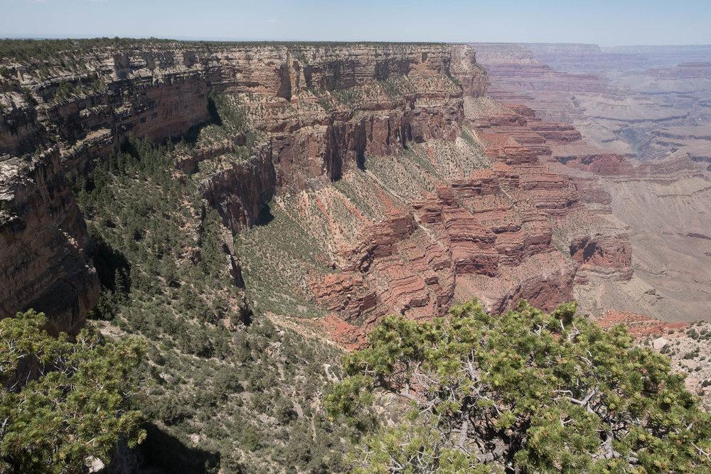 Grand Canyon-2017-8017.jpg