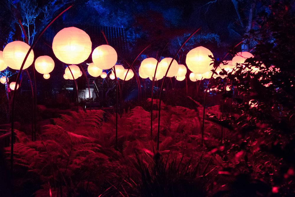Descanso Gardens-2016-5096.jpg