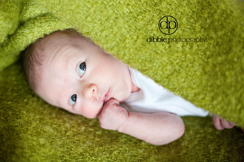newborn-portrait-golden-bc06.jpg
