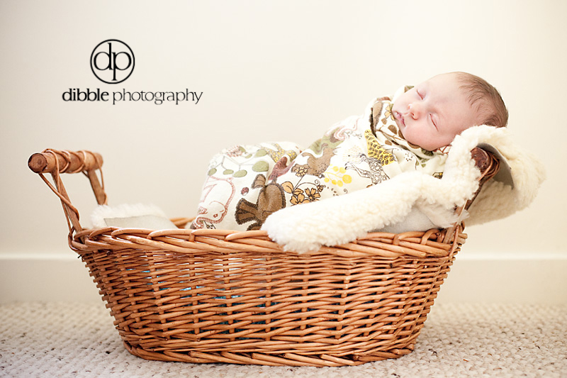 newborn-portrait-golden-bc13.jpg