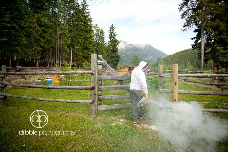 beekeeping-s02.jpg