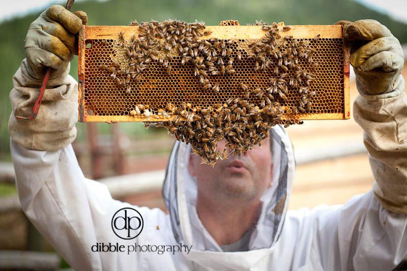 beekeeping-s07.jpg