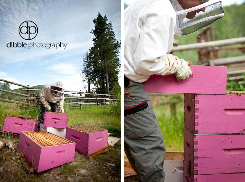 beekeeping-s09.jpg