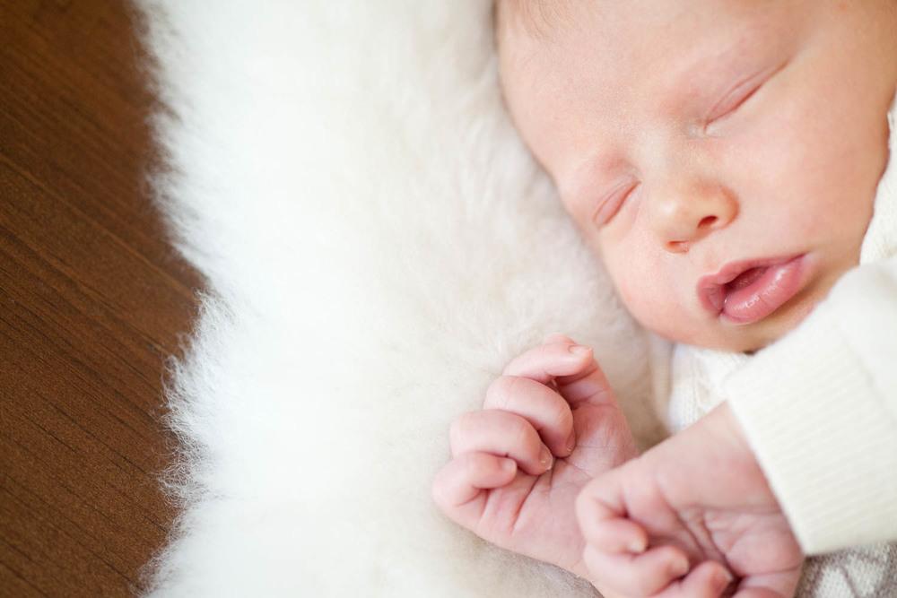 newborn-portraits-dibble-1882.jpg
