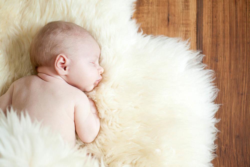 newborn-portraits-dibble-6873.jpg
