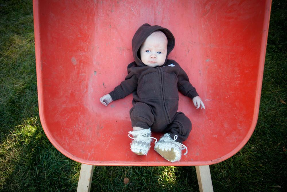 newborn-portraits-dibble-9848.jpg
