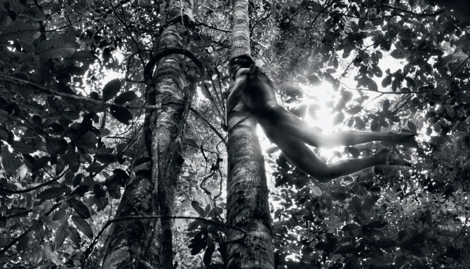 Sebastião Salgado, Zo'é Indian hunter, Brazil, 2009