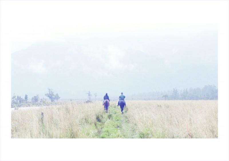 21_Horses
