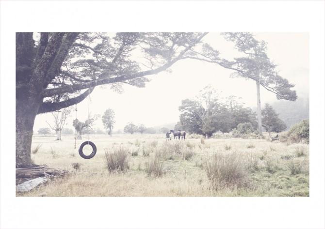 18_Horsetree