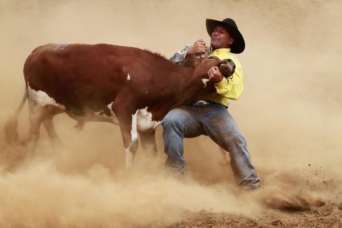 D_03_Bring em down cowboy_Jenny Atkins