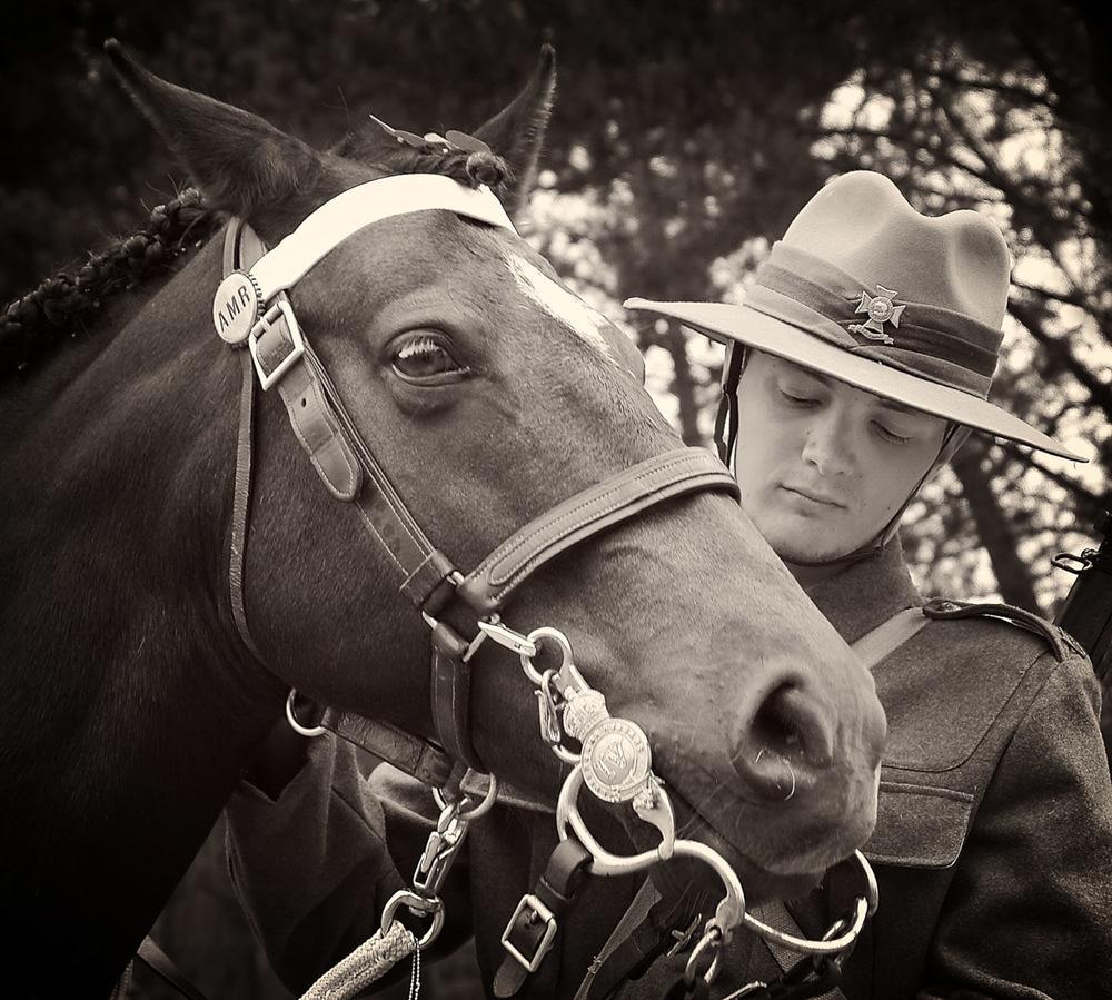 WW1 Horse Memorial.jpg
