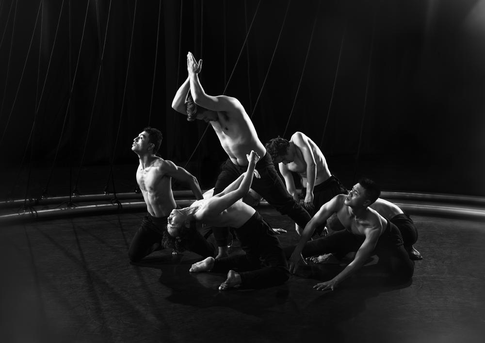 Awa (Atamira Dance Company) by Osborne Shiwan 5.png