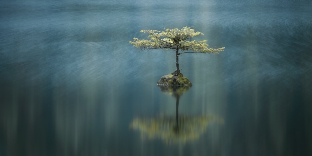 Adam Gibbs, Temperate breeze, Fairy Lake, Port Renfrew, Vancouver Island, British Columbia, Canada
