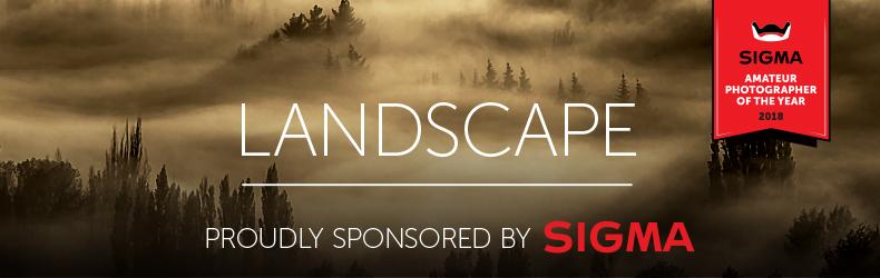 Landscape-790x250.jpg
