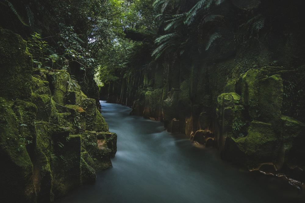 Racheal Trail