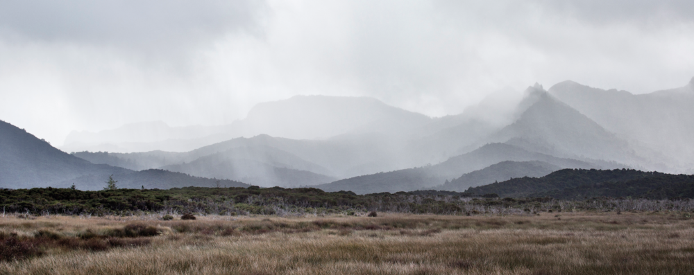 - Landscape photographer Chris Morton tells us how to approach finding a concept for a body of work with reference to his new book, Aotea, Great Barrier: Land and People