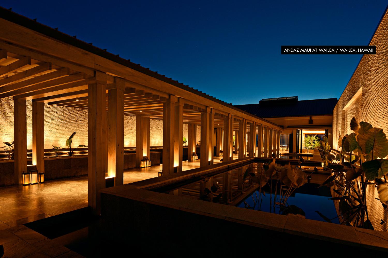 home lighting designer. Andaz for Homepage jpg Focus Lighting  Architectural Design