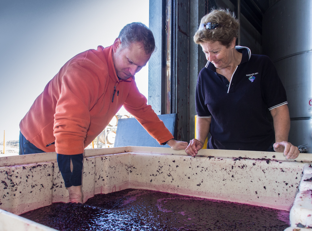 Jenny  with Victor, extended maceration of cabernet crush.