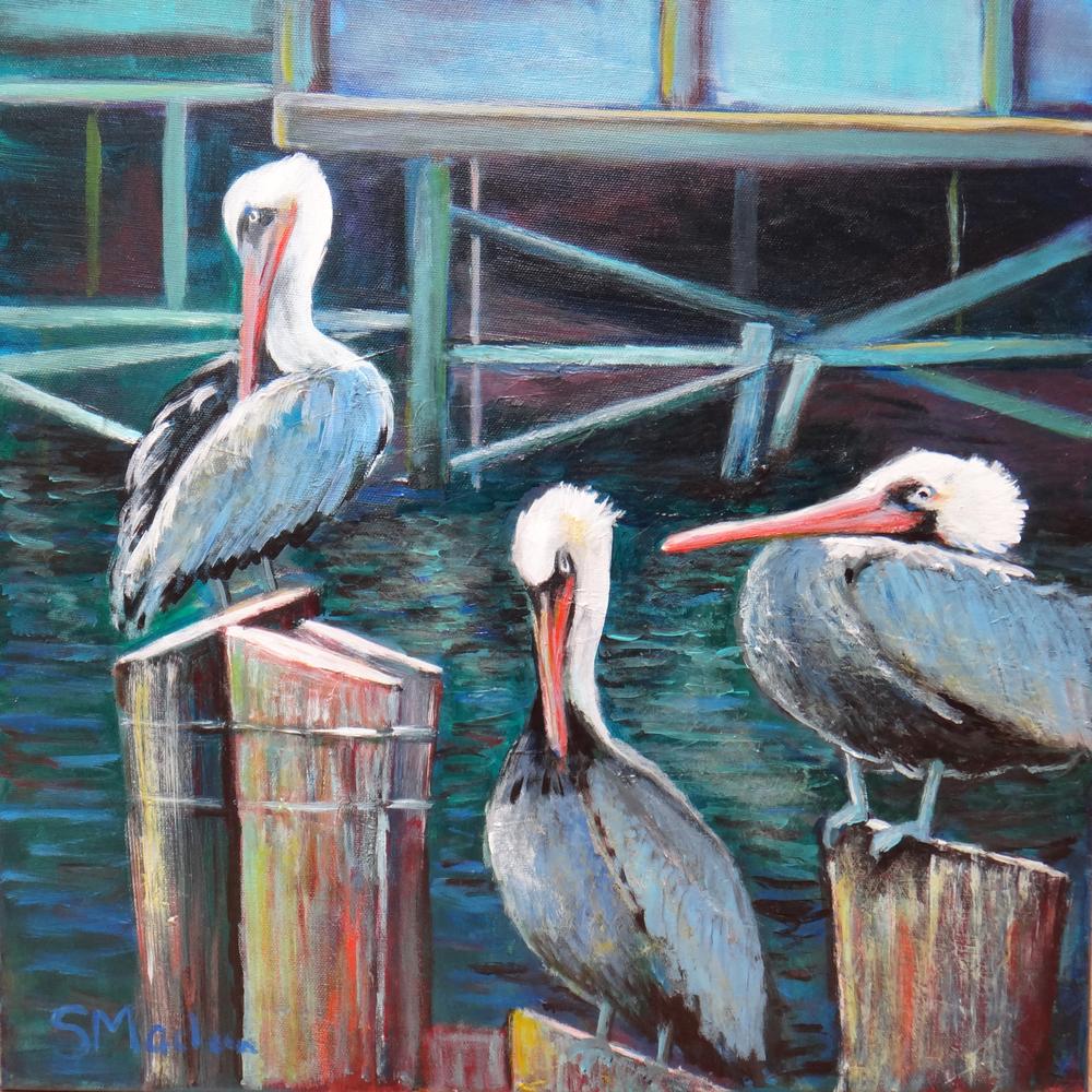 """Monterey Pelicans 18""""x18"""" $400"""