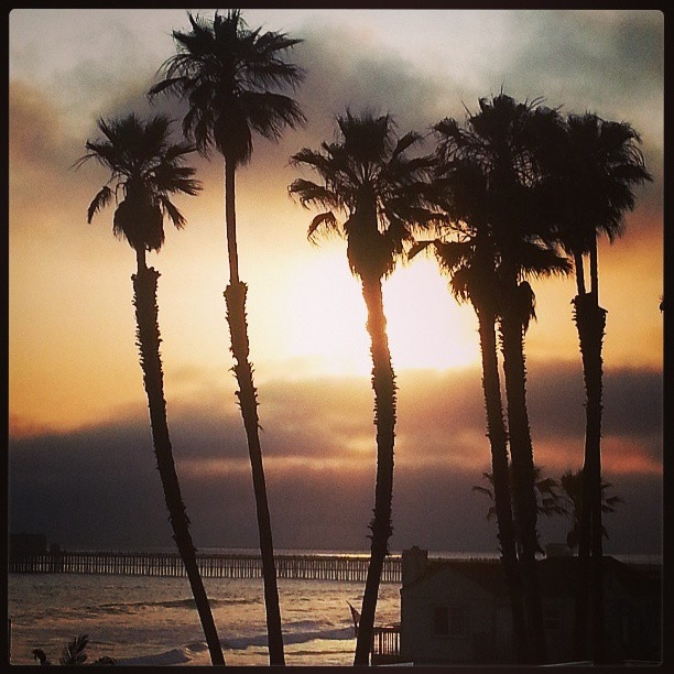oside-sunset-palm-pier.jpg