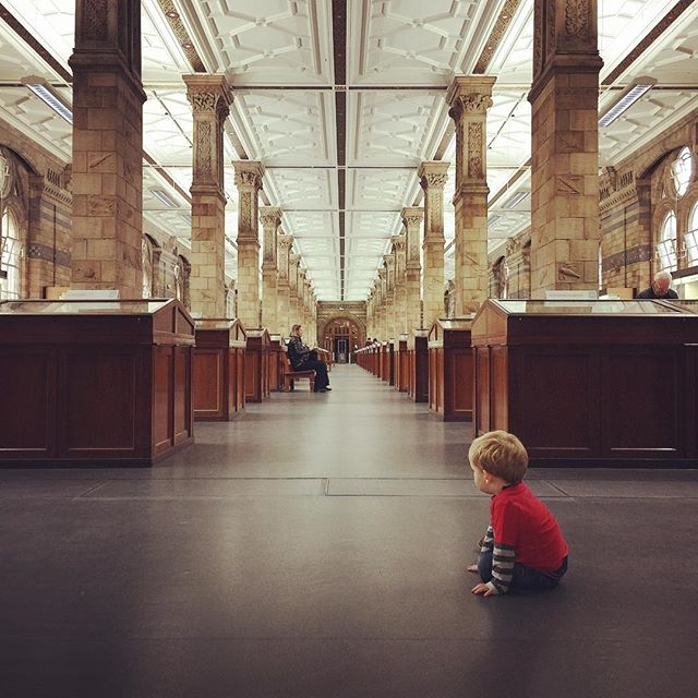 Had an awesome night at Wildlife Photographer of the Year awards, now hanging out for the afternoon at the Natural History Museum with my little boy Abel 👍