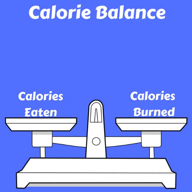 Calorie Balance.png
