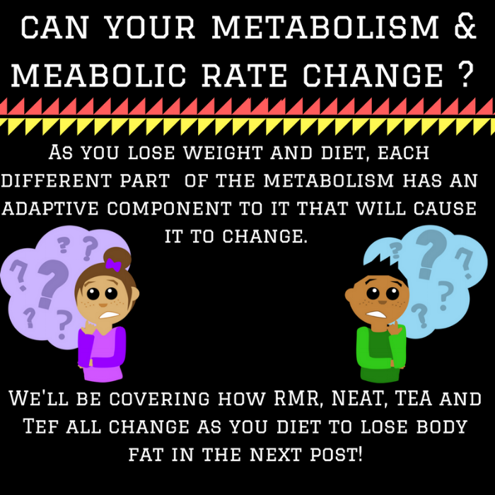 Can your metabolism change -.png
