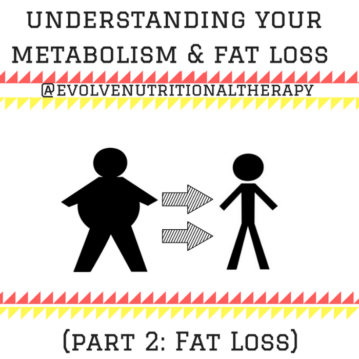 understanding your metabolism & fat loss (PART 2) (1).png