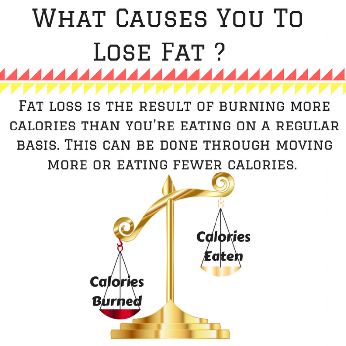 What Causes You To Lose Fat - (1).png