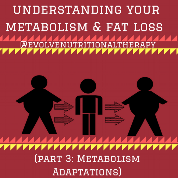 understanding your metabolism & fat loss (PART 3) (1).png