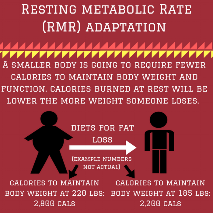 Resting metabolic Rate (RMR) adaptation.png