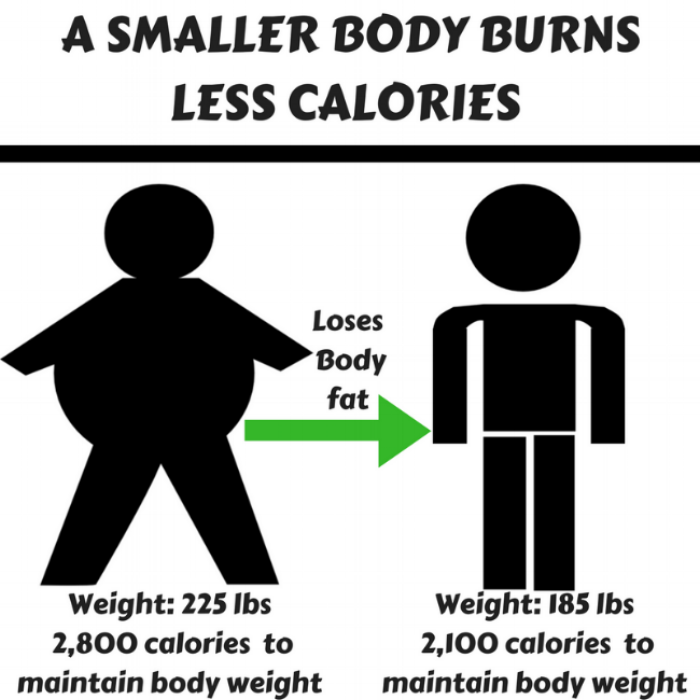 5 REASONS THE LAST 10 LBS ARE THE TOUGHEST TO LOSE (1).png
