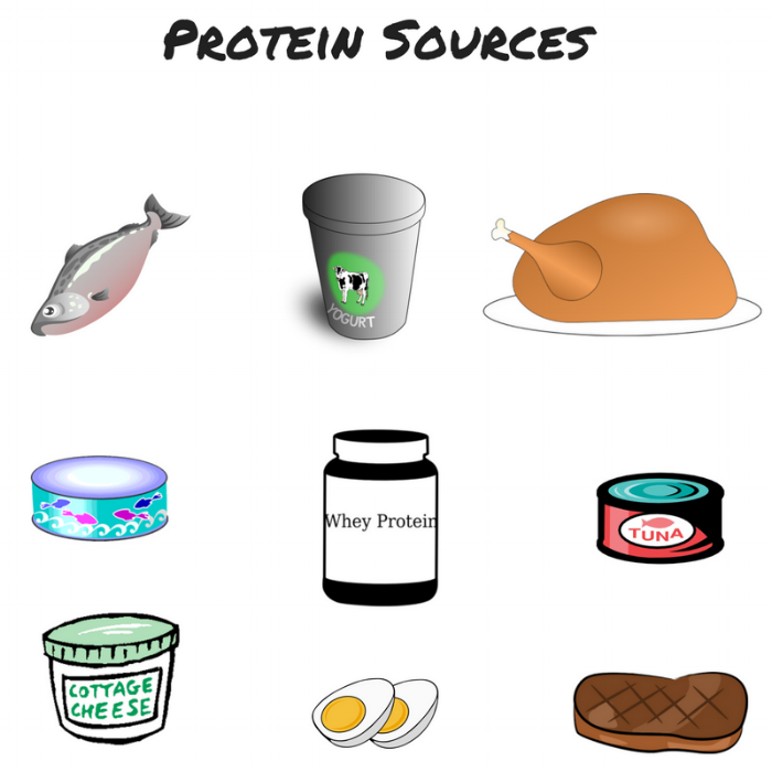 Protein Sources.png