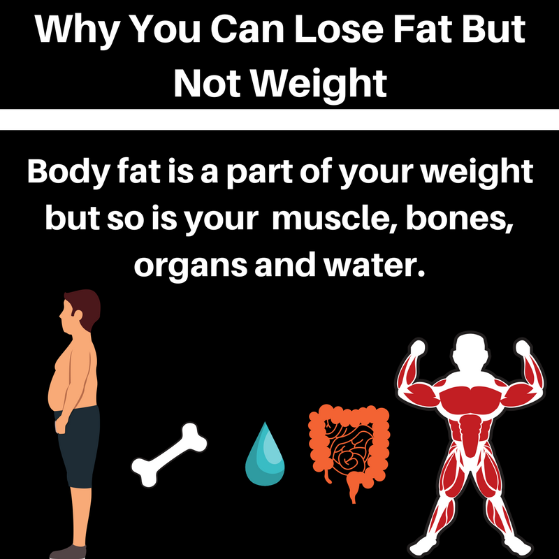 Why You Can Lose Fat But Not Weight (1).png