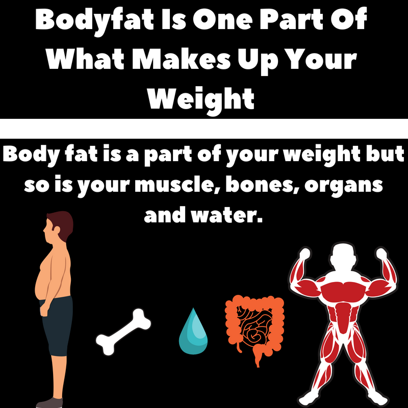Copy of Why You Can Lose Fat But Not Weight.png