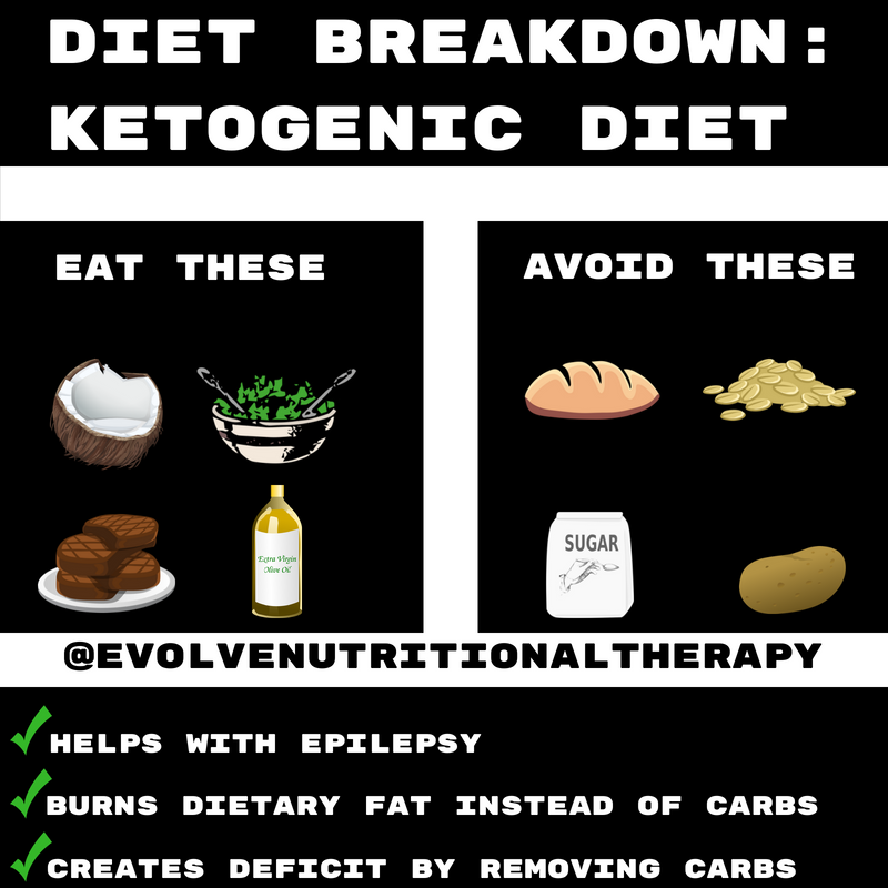 Diet Breakdown What You Have To Know About Popular Diets