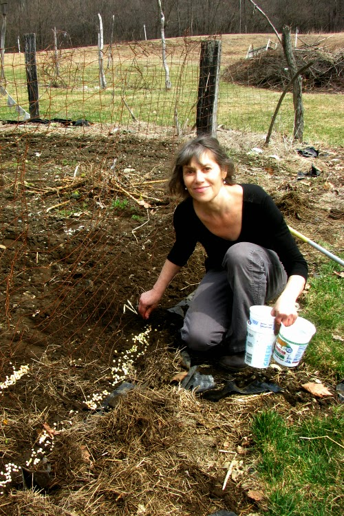 Maggie Planting Peas