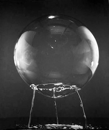 David Goldes |  Bubble