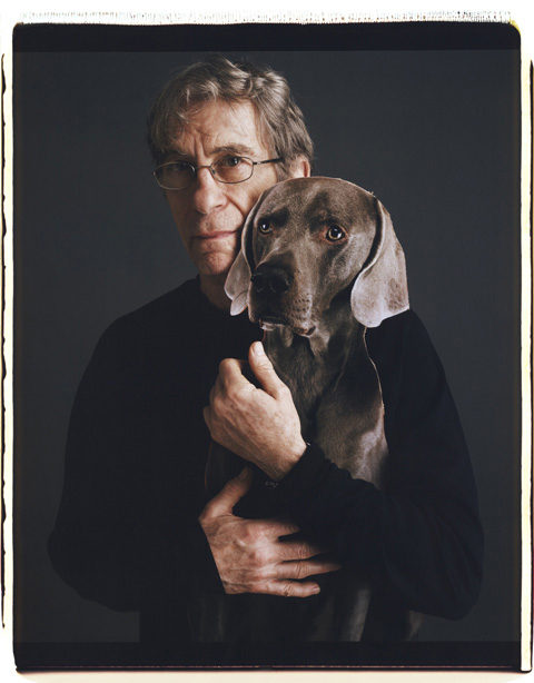 Portrait III,  © William Wegman