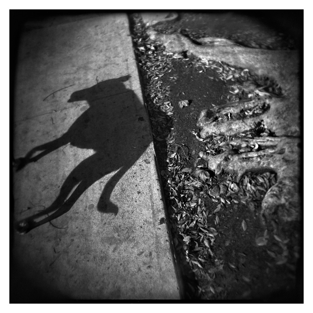 © Thomas Alleman