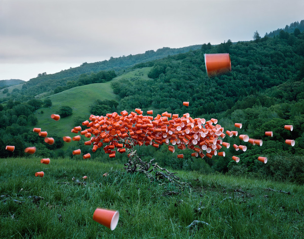 © Thomas Jackson  Cups over Marin